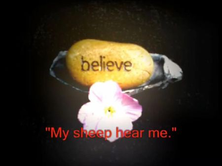 My Sheep Hear Me