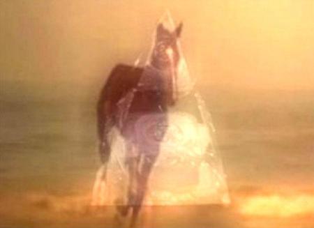 Tri-Horse