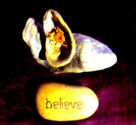 Believing: Shells +